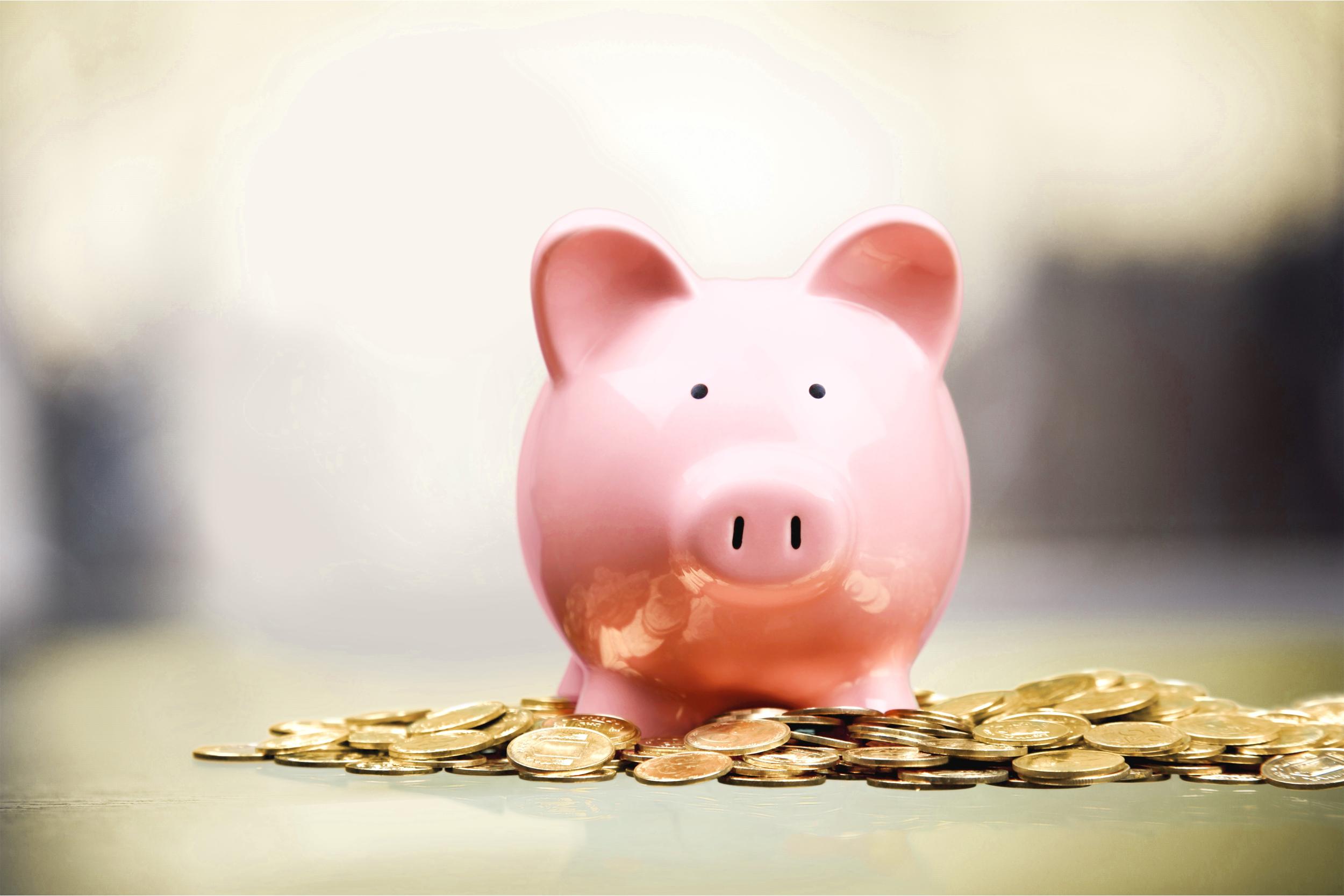 Savings. - FINTT - Inteligência Financeira e Contábil